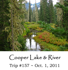 Trip 157 Cooper River 10-07-2011