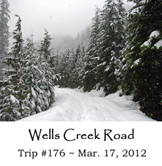 Trip 176 Wells Creek