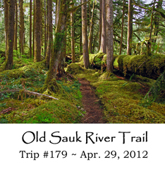 Trip 179 Old Sauk River Trail