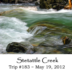 Trip 183 Stetattle Creek
