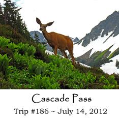 Trip 186 Cascade Pass