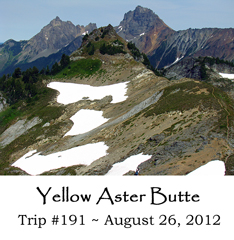 Trip 191 Yellow Aster Butte